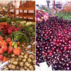 Grøntsager fra Torvehallerne