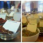Krydderier fra Urtekram