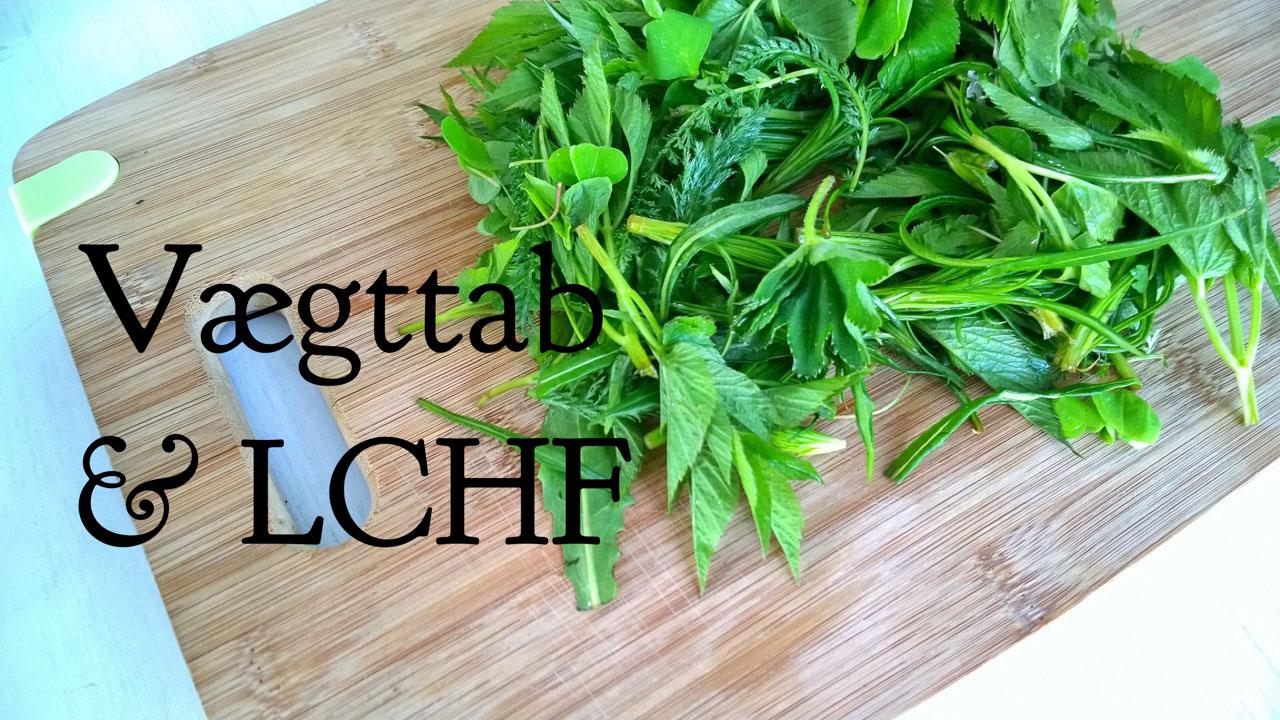 LCHF og vægttab - kan jeg tabe mig ved at spise LCHF? Læs hvordan her: