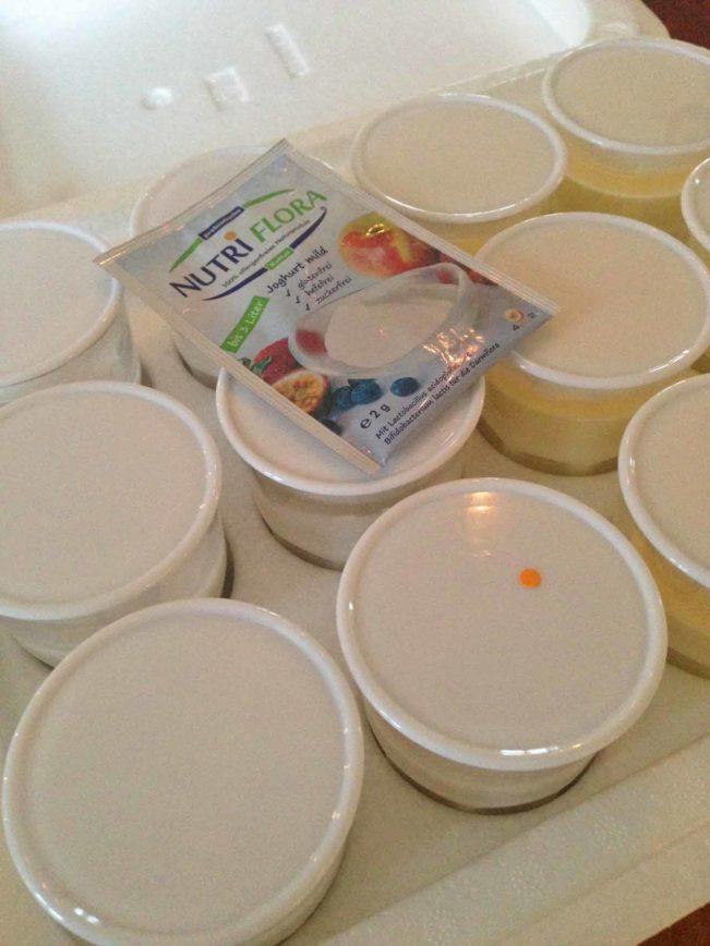hjemmelavet yoghurt is
