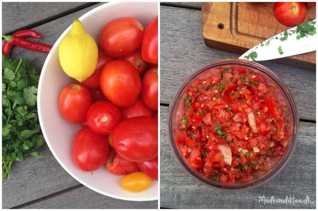 Fermenteret tomatsalsa med koriander - Madbanditten.dk