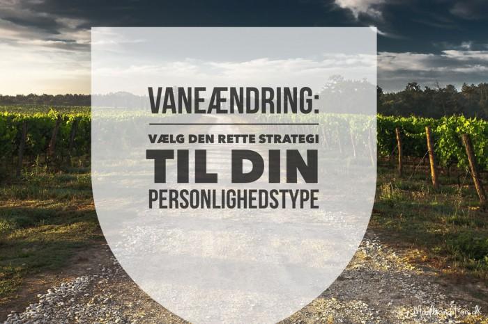 Kend din personlighedstype, når du vil ændre vaner. --> Madbanditten.dk