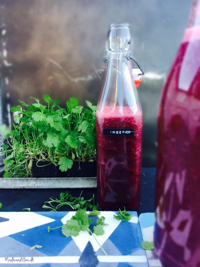 Få en ren vitaminindsprøjtning med denne lilla grøntsagsjuice. --> Madbanditten.dk