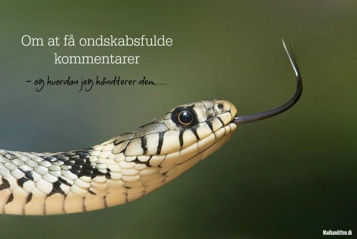 Hvad gør man, hvis man får grove eller ondskabsfulde kommentarer på sin blog? Her er mit bud! --> Madbanditten.dk