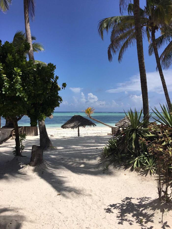 Zanzibar - få svar på alle de praktiske ting ang. rejsen, hvor man skal bo, hvordan strandene er, vejret, hvad du skal pakke etc.