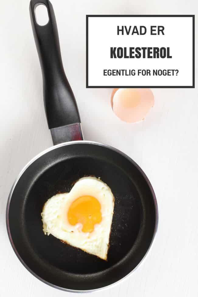 hvad er kolesterol