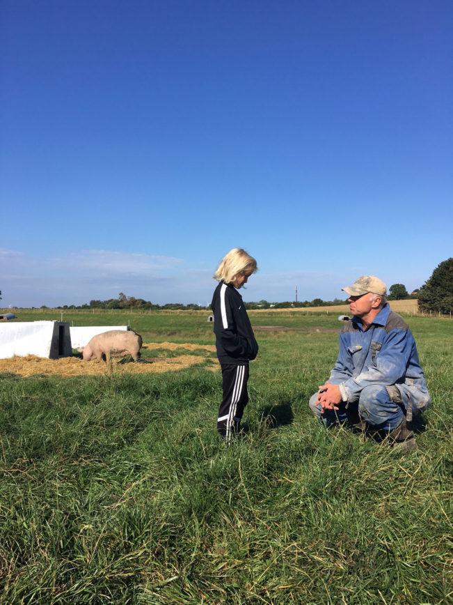 Gelstrupgård - en økologisk gård på sjælland