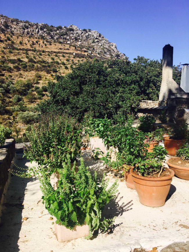Kreta i september - Chania - rejsetips og restauranter