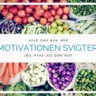 Hvad gør man, når motivationen svigter?