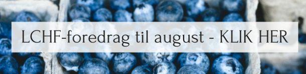 foredrag_blog
