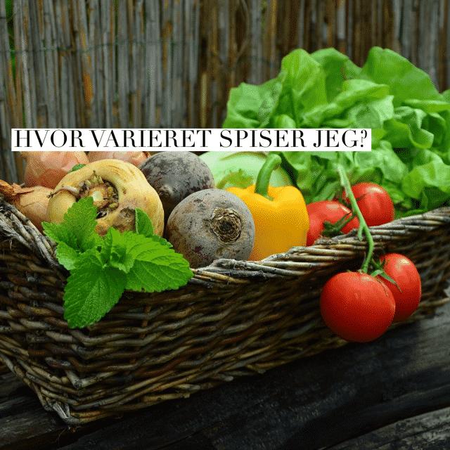 Eksperiment: Hvor varieret spiser jeg? Se svaret her --> Madbanditten.dk