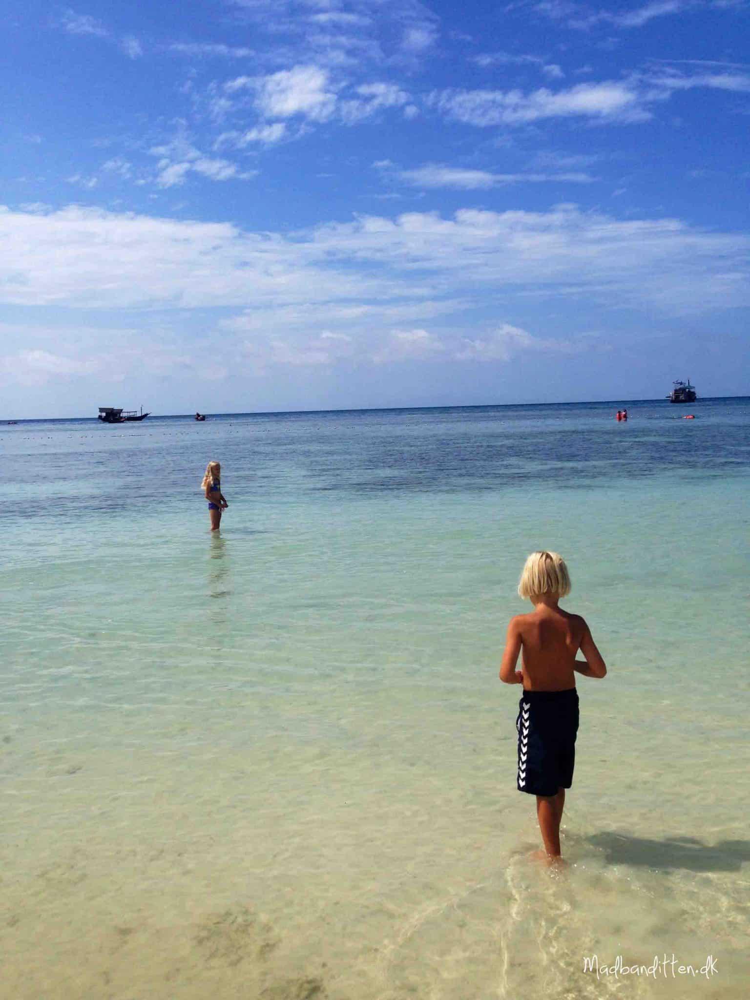 Koh Tao, Sharks Bay