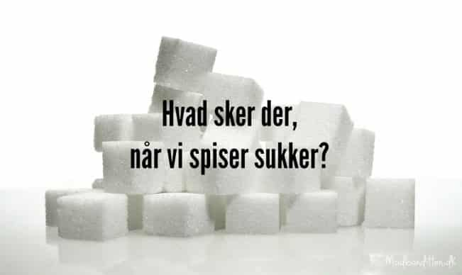 Hvad sker der i kroppen, når vi spiser sukker? --> madbanditten.dk