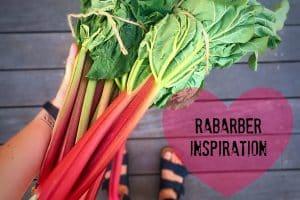 Rabarber inspiration - rabarberkompot, rabarbersyltetøj, rabarber-is