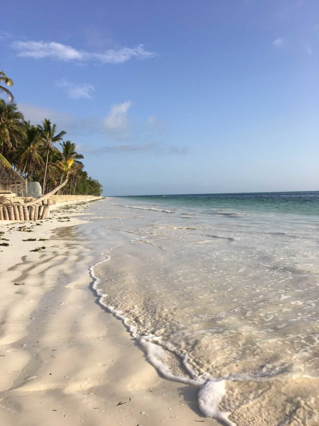Svar på alle dine spørgsmål om Zanzibar her.