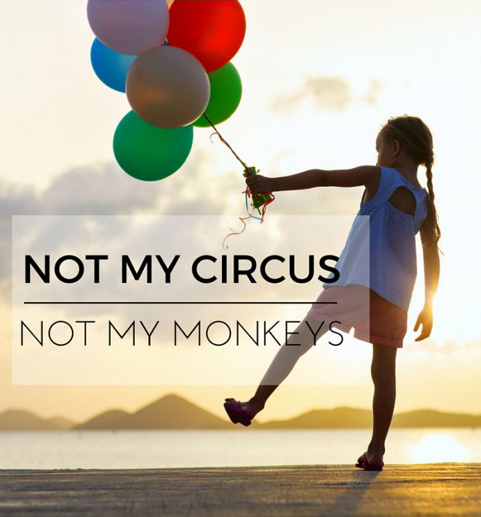 Not my circus - not my monkeys - polsk talemåde