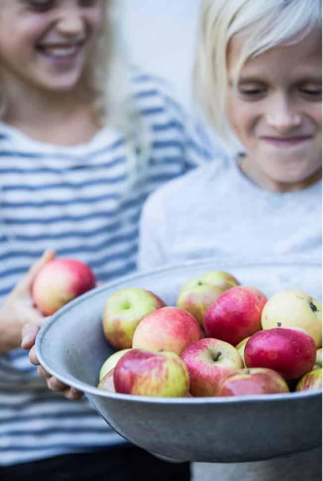 Efterår - æbler - Silas & Vega