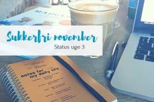 Sukkerfri november - status 3