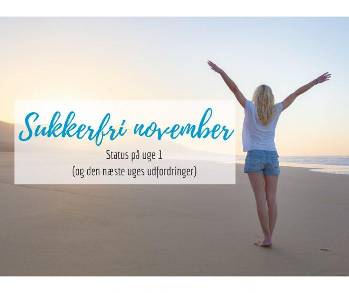 Sukkerfri november - status på uge 1 og den kommende uges udfordringer