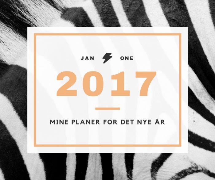 Mine håb og planer for det nye år.