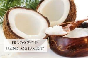 Er kokosolie usundt og farligt Læs alt om kokosolie, mættet fedt og kolesterol her:
