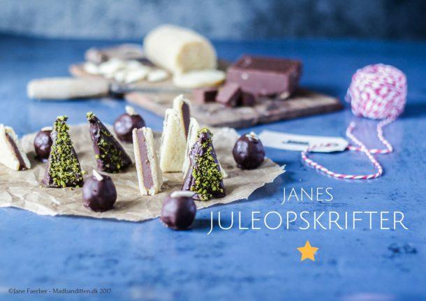 Janes Juleopskrifter - gratis e-bog