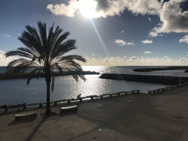 Madeira - Funchal - Calheta - se billederne fra vores tur til Madeira i februar-marts