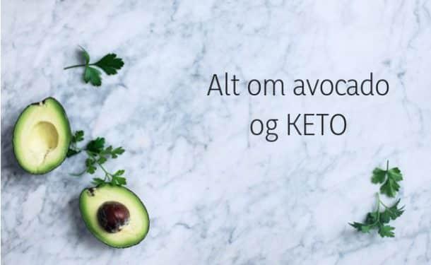 Alt om avocado og KETO