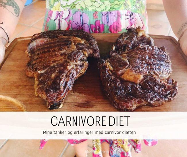 Carnivore diet - Hvad er carnivor diæten? Læs alt om carnivor på dansk her.